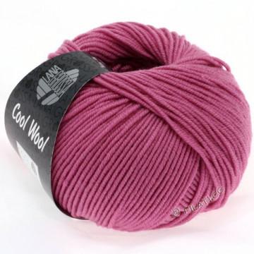 Cool Wool 2011